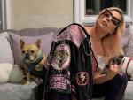 Lady Gaga's Dog Walker Shot, Two Dogs Stolen